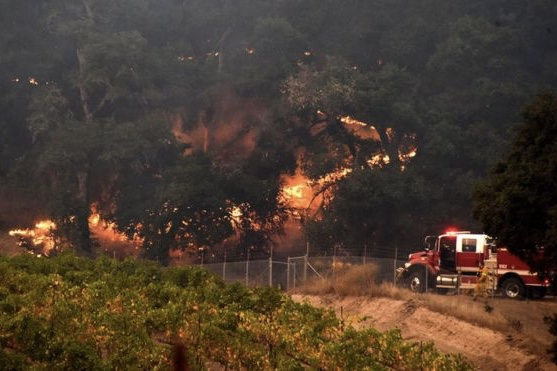Death Toll Climbs To 31 People in California Wildfires 1