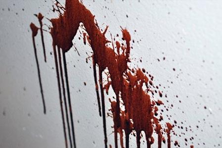 Shot,Vivian Botes,Murder,News,Newsfeeds24.com,Newsfeeds24,
