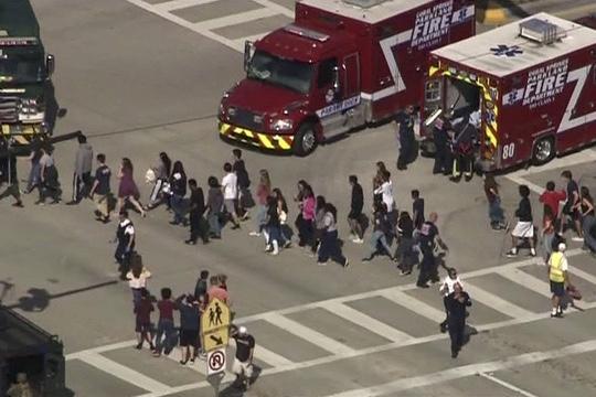 17 shot dead at Florida high school 1