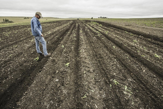 Two Men Arrested For Farm Murders In Free State 1