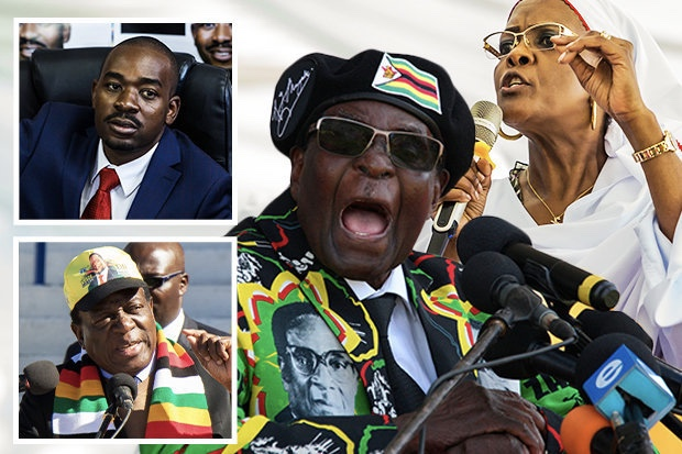 Video: Tension rises between Mnangagwa and Chamisa as vote counting begins in Zimbabwe 1