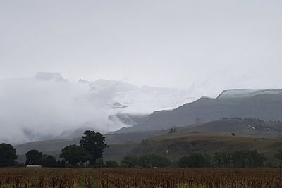Video: Guess What? Snow Falls In Certain Parts Of Kzn