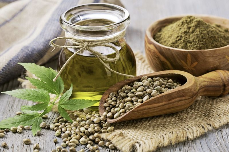 Why Is Nobody Talking About The Environmental And Economic Benefits Of Hemp? 1